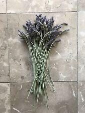 12in 30cm Long Stem Organic Natural Air Dried California Lavender Flower Bunches