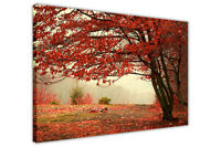 RED TREE FOREST FRAMED CANVAS PICTURES WALL ART PRINTS LANDSCAPE POSTERS ARTWORK