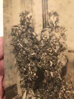 "Vintage Antique Photo Freaky Unusual ""Tard & Feathered Couple"" Wierd Photo"