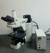 Nikon Microscope 80i With Fluorescence