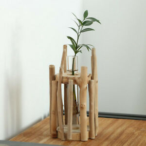 Glass Test Tube Planter Vase in Wooden Stand Flower Pot Scindapsus Container