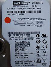 1 TB Western Digital WD1002FBYS-01A6B0 / HARNNV2AB / MAR 2009 hard disk