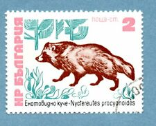 BULGARIA stamp 1973 Bulgarian Fauna. 2s, Racoon-dog