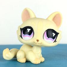 Authentic Littlest Petshop 848 Crouching Kitty Cat / Sphynx Chat Pet Shop LPS