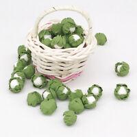 5Pcs Mini handmade clay vegetables Dollhouse miniatures cauliflower cabbage