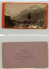 Baldi et Würthle, Autriche, Un paysage montagneux CDV vintage albumen carte de v