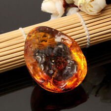 1x Beautiful Resin Amber  Butterfly Insect Stone Pendant Necklace 1.6x0.8x2''