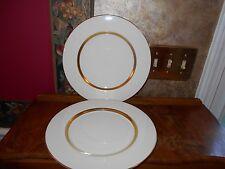 "Set of 2 Antique Theodore HAVILAND New York China GOTHAM DINNER PLATES 10.5"""