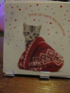 Pack of 5 Cat in a Hat Christmas Cards