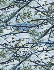 Landscape Sky Tree Branches Nature Timeless Treasures #5261 By the Yard