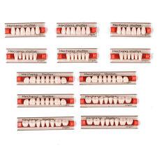 3Set/84pcs Acrylic Resin Denture Teeth VITA Color A1 Upper Lower Shade Dental