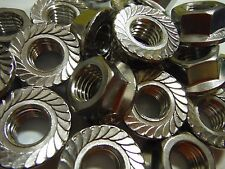 M10 Serrated flage nut (20pcs) Stainless