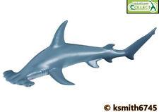 CollectA SCALLOPED HAMMERHEAD SHARK plastic toy wild zoo sea animal FISH  NEW 💥
