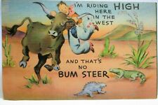 1940s POSTCARD IM RIDING HIGH HERE IN THE WEST, THATS NO BUM STEER