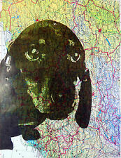 Art N Words Dachshund Dog Face Puppy Eyes Original Atlas Page Pop Art Print