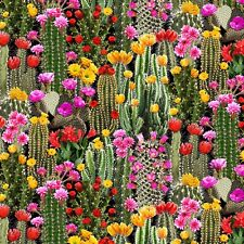 Fabric Desert Cactus & Flowers Full On Timeless Treasures Cotton by the 1/4 yard