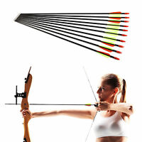 10 Archery Arrows Carbon Fibreglass with Steel Tip Compound or Recurve Bow 31''