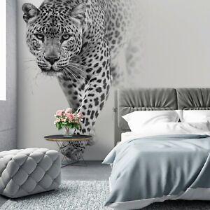Vlies Fototapete Leopard Tiger Grau Jaguar Wohnzimmer TAPETE XXL Tiere KLEISTER