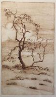 Radierung Baum Landschaft Frühlingsbaum mit Wolken um 1920 Druckgrafik xz