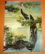 A LONG-TAILED COOK  lenticular 3D moviemotion POSTCARD vintage RARE 1960  SSP-76