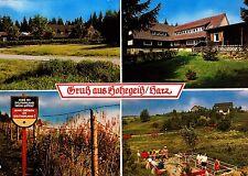 Gruß aus Hohegeiß / Harz , Ansichtskarte