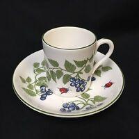 Crown Staffordshire Demitasse Cup Saucer Set Blueberries Ladybug Bone China VTG
