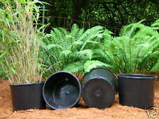 Nursery pots plant pot 20 NEW THICK HEAVY DUTY TRADE 7 gallon squat containers