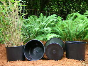 Nursery pots plant pot 5 NEW HEAVY DUTY TRADE 7 gallon gal squat containers
