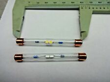 6.3 VAC WARM WHITE FUSE LAMPS 6MM OD X 60MM LONG  2PK SET FITS SOME FISHER