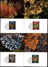 Liechtenstein 1981 muschi e licheni massimo Card Set #C38864
