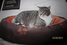 Hunde & Katzen Haustierbett, Haustier Zubehör , Haustiere ,Bett * NEU *