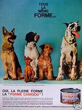 PUBLICITÉ 1968 PÂTÉE CANIGOU BERGER ALLEMAND PINSCHER BRAQUE GRIFFON DANOIS