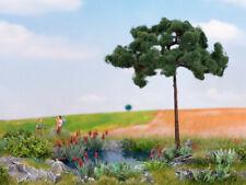 Pine Tree -- Pinie -- 115 mm high HO TT N Noch 21997
