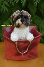 Leonardo Resin Dogs Shih Tzu Playtime In Gift Bag New LP13530