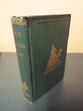 Bible Animals by Rev. J.G. Wood - 1870