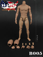 1/6 MUSCULAR FIGURE BODY Narrow Shoulder Hot Toys TTM19 Hitfigure ❶USA❶