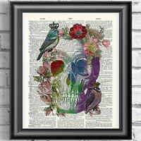 Watercolour Floral Skull and Birds on Antique Dictionary Book Page Picture
