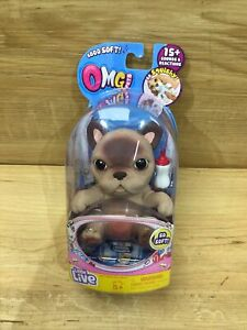 Little Live Pets - OMG - Single Pack S1 - French Bulldog