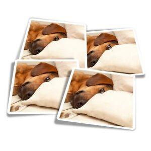 4x Square Stickers 10 cm - Cute Dachshund Sausage Dog  #14257