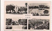 algerie, un bonjour de zaralda