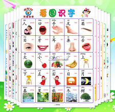 Baby Children Education Preschool Chinese Learning Double Wall Chart Poster 12pc