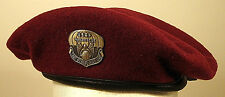 USAF US Air Force Pararescue Flash Crest Badge Insignia Oxidized Maroon Beret
