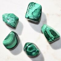 [1] African (Congo) Malachite Crystal Gallet / Palm Stone / XL Tumbled Stone
