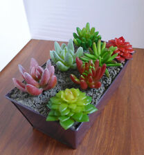 Artificial Miniature Succulents Grass Set of 7