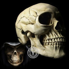 Halloween Props Replica Human Skull Gothic Party Decoration Ornament Life Size