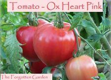 Tomato Seed Ox Heart Pink 100 Seeds Heirloom Vegetable  Vine Garden Oxheart