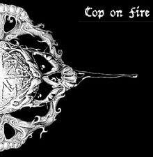 "Cop On Fire / Visions Of War split 12"" Vinyl / Gatefold (2008) Hardcore Punk"
