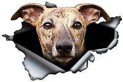 Greyhound dog decal sticker for your car window