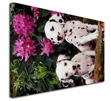 More details for dalmatian dogs 'love you dad' x-large 30