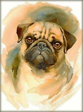 Pug Dog Head Study Dog Puppy Dogs Vintage Art Poster Print. 10x13.5 inches